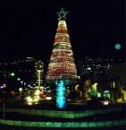 עץ חג מולד בחיפה