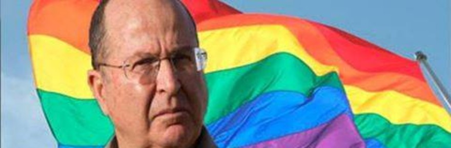 Yaalon-gay-flag_-_Copy