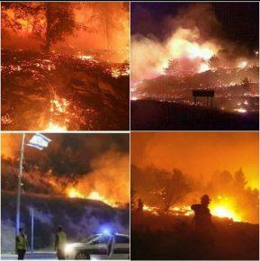 שריפות מצפון ועד לדרום